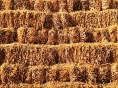 I'm the needle, you're the haystack