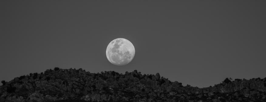 Just a Regular Moon